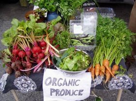 Approaching The Collapse: Don't Panic, Go Organic, By Ronnie Cummins