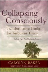 "Robert David's Steele's Stunning Review Of ""Collapsing Consciously"""