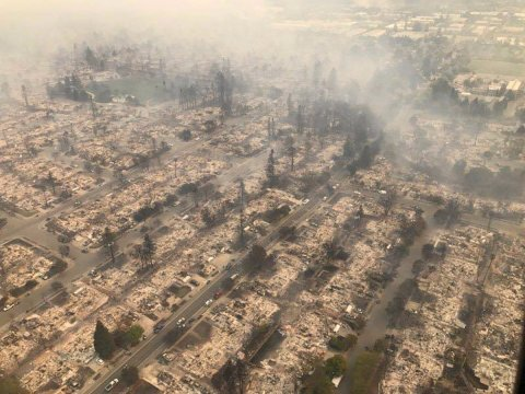 Life in the Anthropocene, Field Notes From The Santa Rosa Fires, By Dianne Monroe